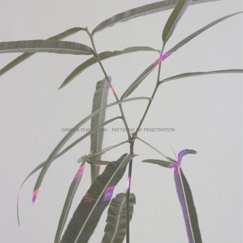 Patterns Of Penetration — Damien Dubrovnik